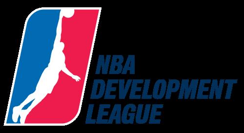 老鹰队宣布将打造NBDL球队,NBA过半俱乐部拥有下属球队