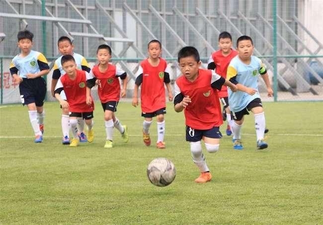 足球青训越来越火,球探生意如何才能从中分一杯羹?